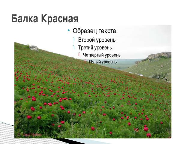 Балка Красная