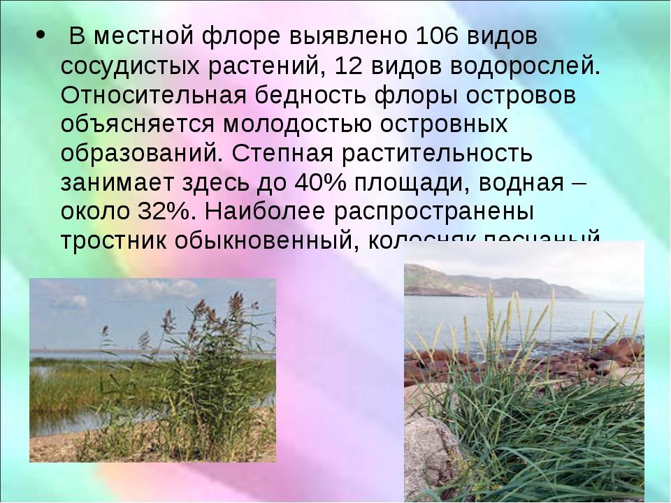 В местной флоре выявлено 106 видов сосудистых растений, 12 видов водорослей....