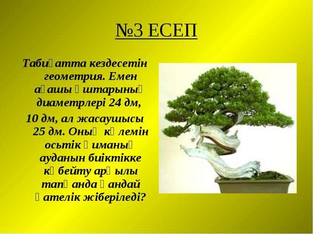 №3 ЕСЕП Табиғатта кездесетін геометрия. Емен ағашы ұштарының диаметрлері 24 д...