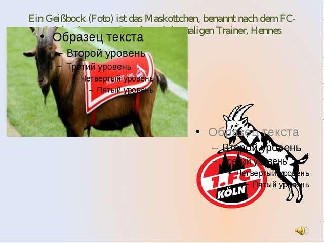 Ein Geißbock (Foto) ist das Maskottchen, benannt nach dem FC-Spieler der erst...