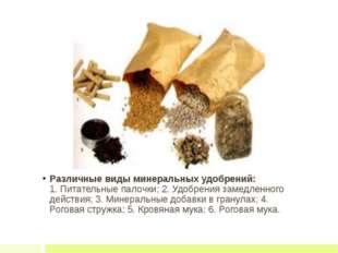 Различные виды минеральных удобрений: 1. Питательные палочки; 2. Удобрения з