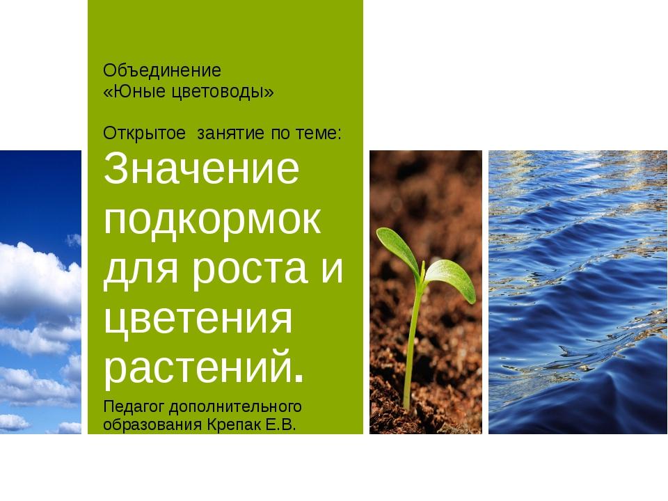 Объединение «Юные цветоводы» Открытое занятие по теме: Значение подкормок для...