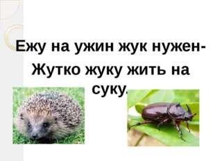 Ежу на ужин жук нужен- Жутко жуку жить на суку.