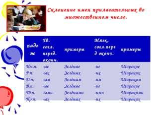 Склонение имен прилагательных во множественном числе. падеж Тв.согл. перед.ок