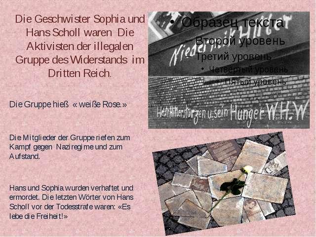 Die Geschwister Sophia und Hans Scholl waren Die Aktivisten der illegalen Gru...