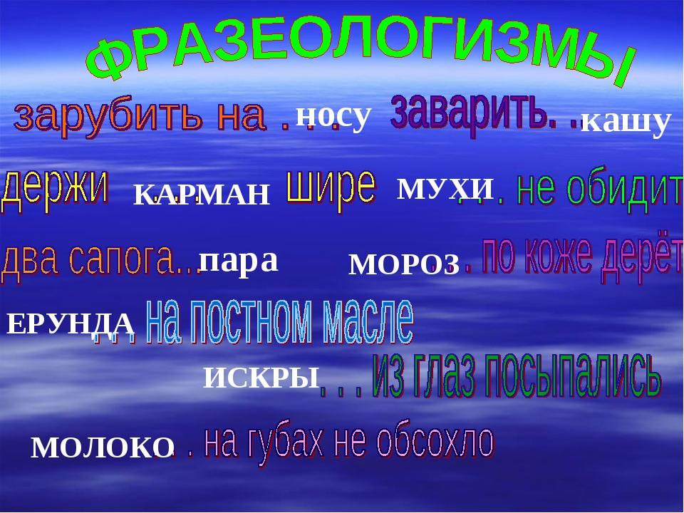 носу кашу МУХИ КАРМАН пара ИСКРЫ МОРОЗ ЕРУНДА МОЛОКО