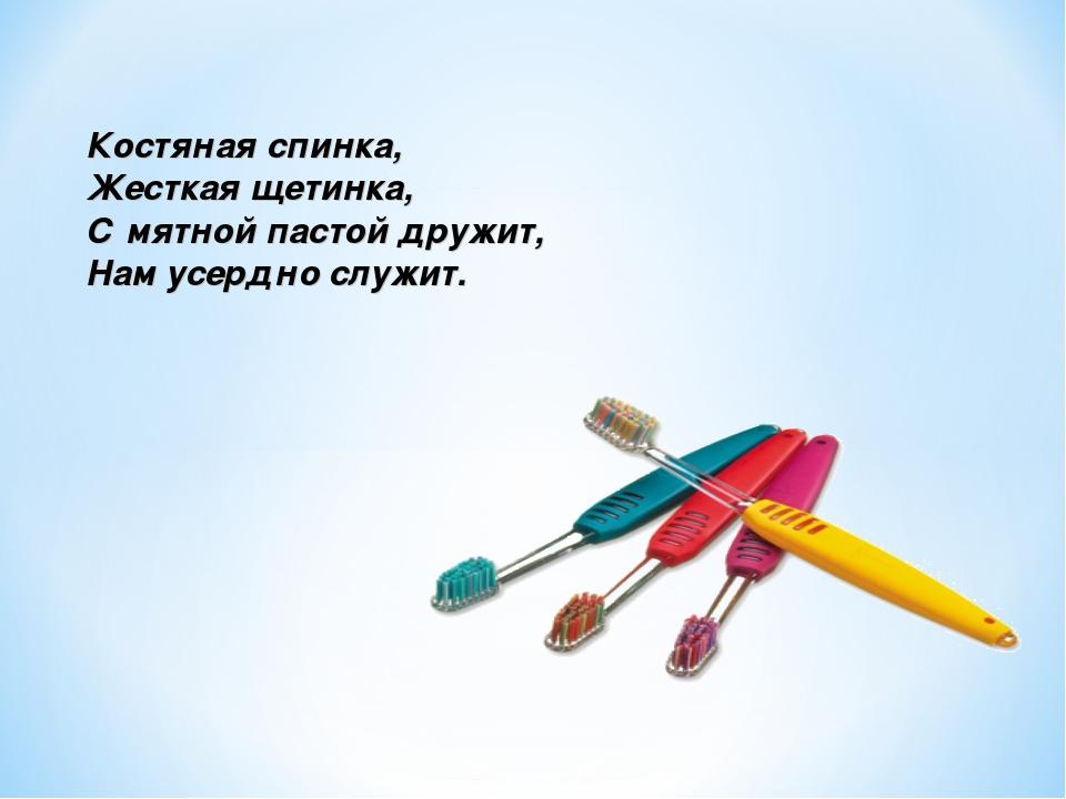 Костяная спинка, Жесткая щетинка, Смятной пастой дружит, Нам усердно служит.