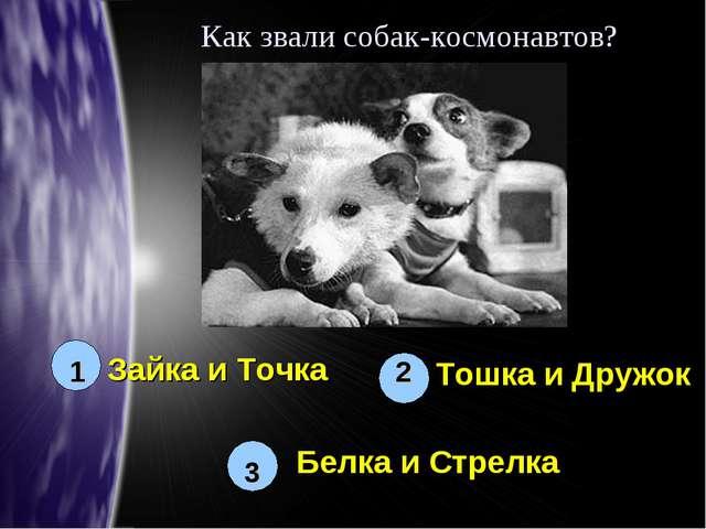 Как звали собак-космонавтов? 1 2 3 Белка и Стрелка Зайка и Точка Тошка и Дружок