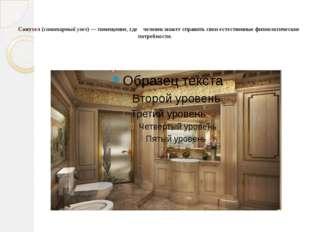 Санузел (санитарный узел) — помещение, где человек может справить свои естес