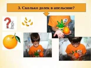 3. Сколько долек в апельсине?
