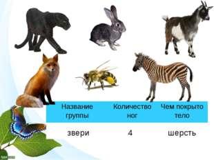 звери 4 шерсть Название группы Количество ног Чем покрыто тело
