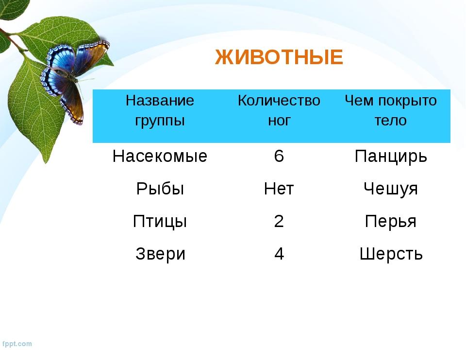ЖИВОТНЫЕ Название группы Количество ног Чем покрыто тело Насекомые Рыбы Птицы...