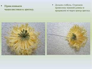 Приклеиваем чашелистики к цветку. Делаем стебель. Отрезаем проволоку нужной д
