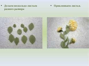 Делаем несколько листьев разного размера Приклеиваем листья.