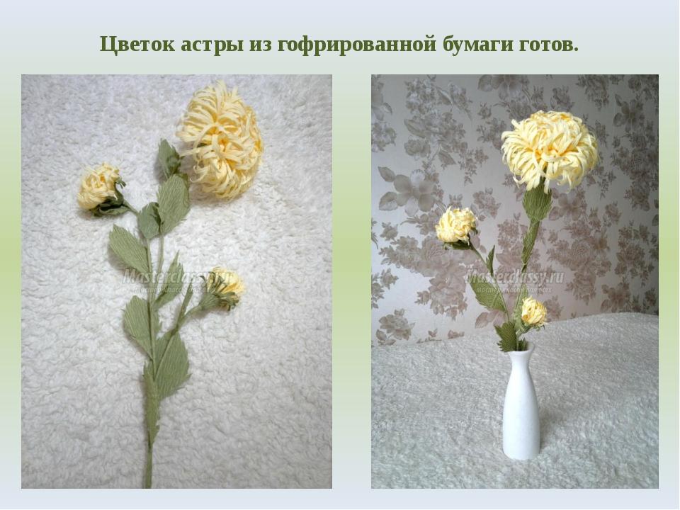 Цветок астры из гофрированной бумаги готов.