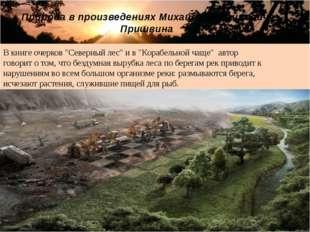"""В книге очерков """"Северный лес"""" и в """"Корабельной чаще"""" автор говорит о том, чт"""