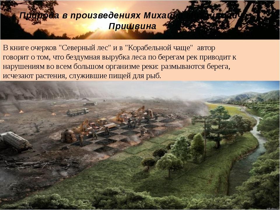 """В книге очерков """"Северный лес"""" и в """"Корабельной чаще"""" автор говорит о том, чт..."""