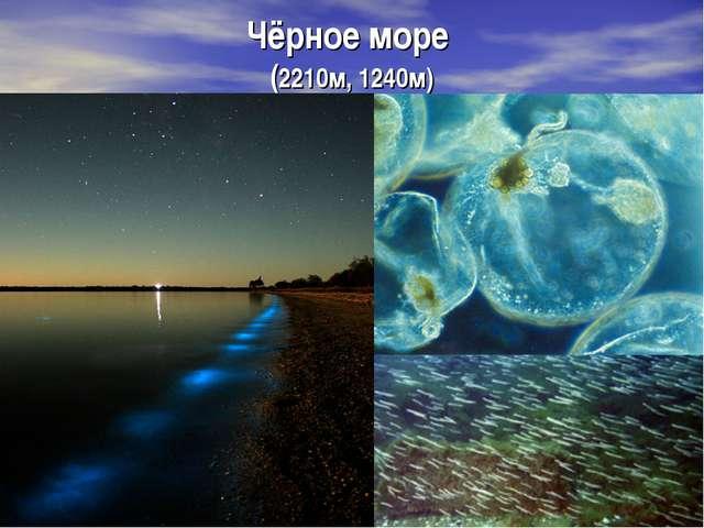 Чёрное море (2210м, 1240м)