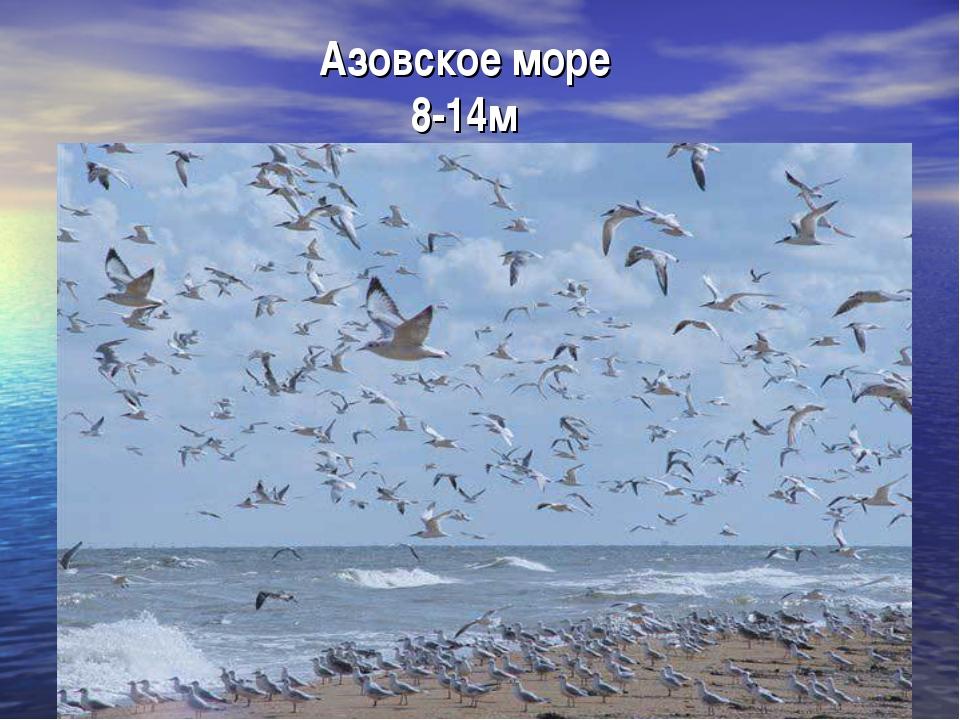 Азовское море 8-14м