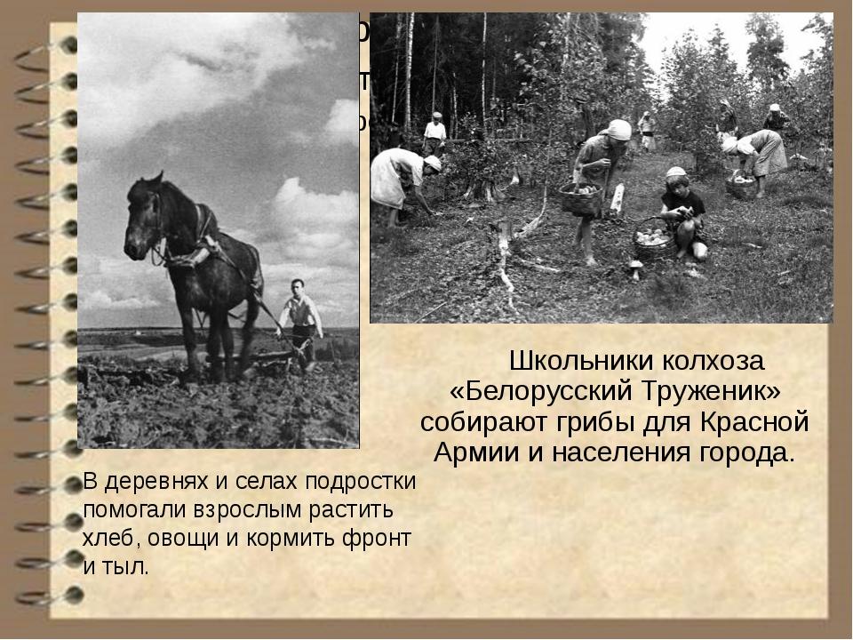 В деревнях и селах подростки помогали взрослым растить хлеб, овощи и кормить...