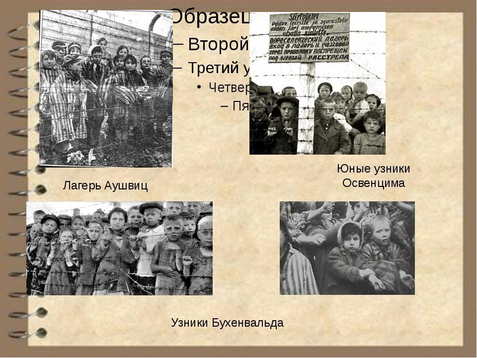 Узники Бухенвальда Лагерь Аушвиц Юные узники Освенцима