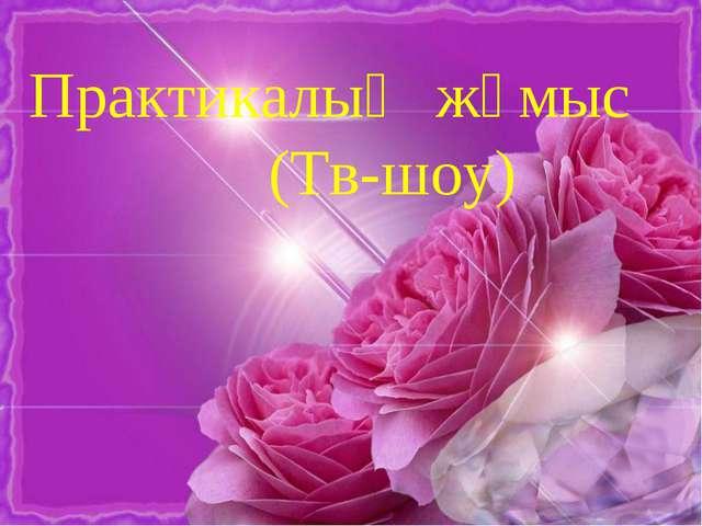 Практикалық жұмыс (Тв-шоу)