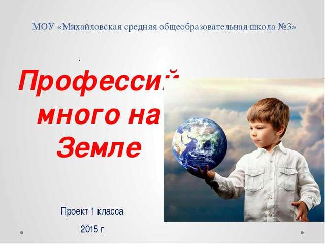 МОУ «Михайловская средняя общеобразовательная школа №3» Профессий много на Зе...