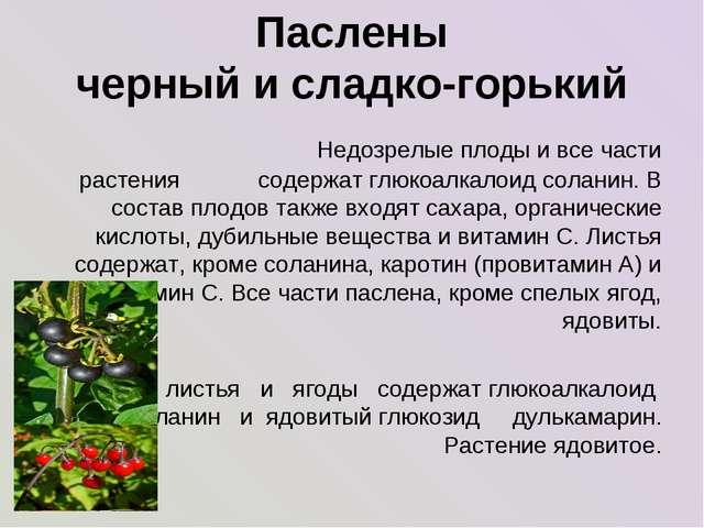 Паслены черный и сладко-горький Недозрелые плоды и все части растения содерж...