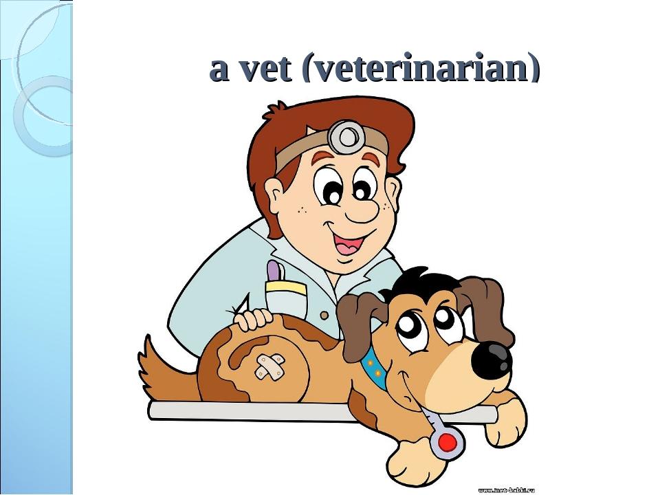 a vet (veterinarian)