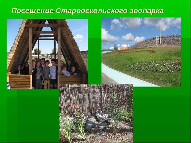Посещение Старооскольского зоопарка