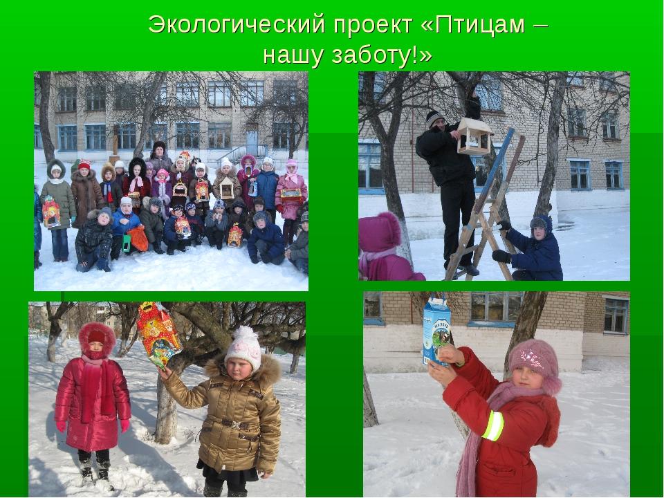 Экологический проект «Птицам – нашу заботу!»