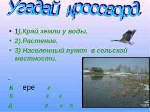 1).Край земли у воды. 2).Растение. 3) Населенный пункт в сельской местности.