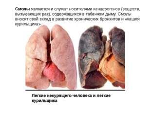 Смолы являются и служат носителями канцерогенов (веществ, вызывающих рак), со