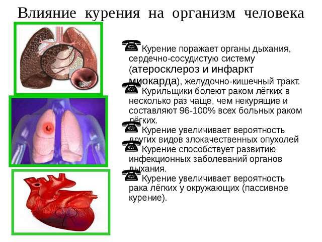 Курение поражает органы дыхания, сердечно-сосудистую систему (атеросклероз и...