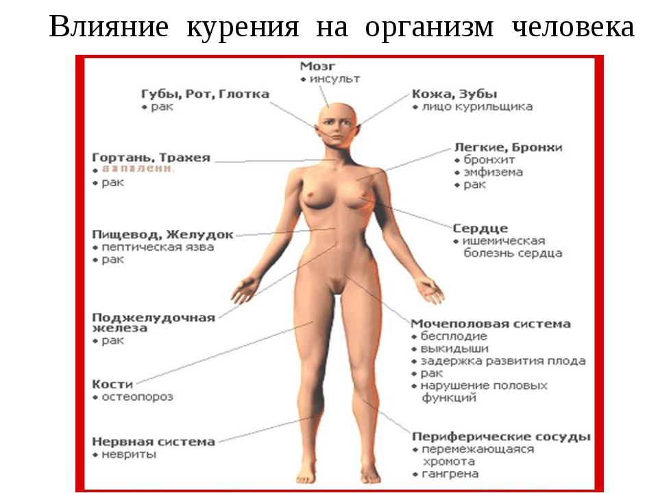 mozhet-li-masturbatsiya-vizvat-gormonalniy-sboy