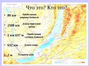Что это? Кто это? 80 км 2100 км 1 км 637 м 632 км 2 м Наибольшая ширина Байка