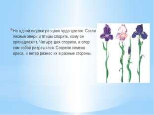 На одной опушке расцвел чудо-цветок. Стали лесные звери и птицы спорить, ком