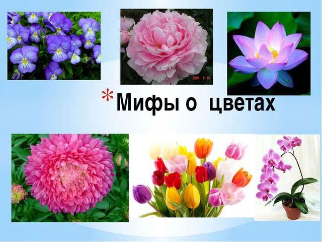 Мифы о цветах