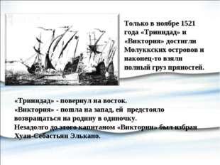 Только в ноябре 1521 года «Тринидад» и «Виктория» достигли Молуккских острово