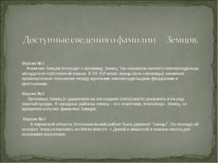 . Версия №1 Фамилия Земцов восходит к прозвищу Зeмец. Так называли мелкого зе