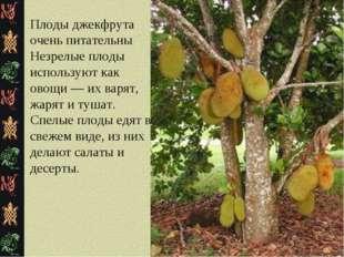 Плоды джекфрута очень питательны Незрелые плоды используют как овощи — их вар
