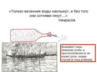 «Только весенние воды нахлынут, и без того они сотнями гинут…» Некрасов Выжив