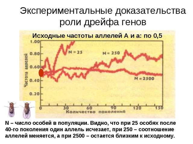 Экспериментальные доказательства роли дрейфа генов Исходные частоты аллелей А...