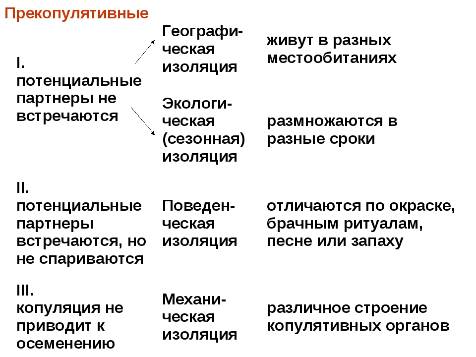 Прекопулятивные I. потенциальные партнеры не встречаютсяГеографи-ческая изол...