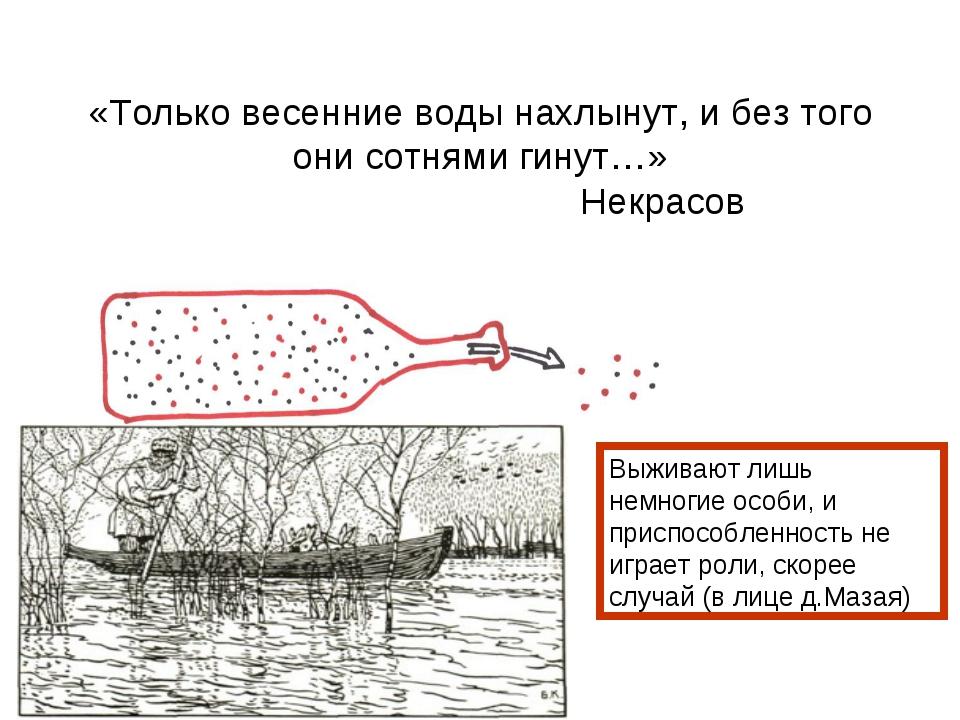 «Только весенние воды нахлынут, и без того они сотнями гинут…» Некрасов Выжив...