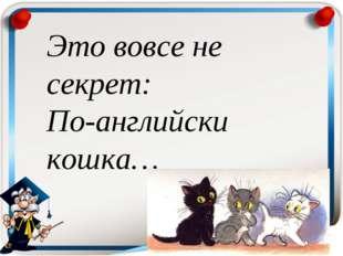 Это вовсе не секрет: По-английски кошка…