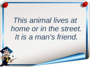 This animal lives at home or in the street. It is a man's friend.