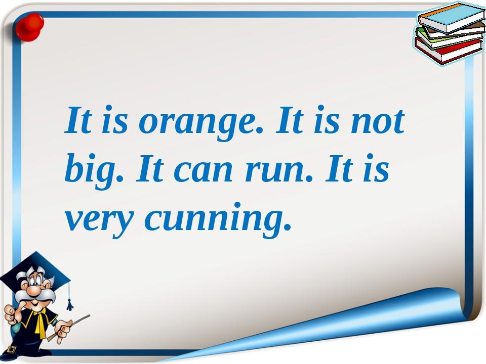 It is orange. It is not big. It can run. It is very cunning.