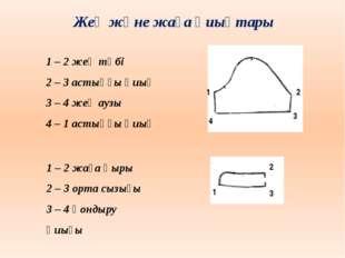 Жең және жаға қиықтары 1 – 2 жең түбі 2 – 3 астыңғы қиық 3 – 4 жең аузы 4 – 1