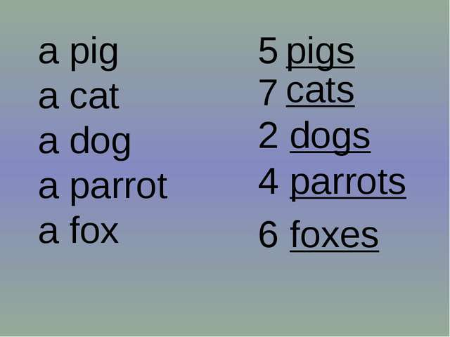 a pig a cat a dog a parrot a fox pigs 5 7 2 4 6 cats dogs parrots foxes